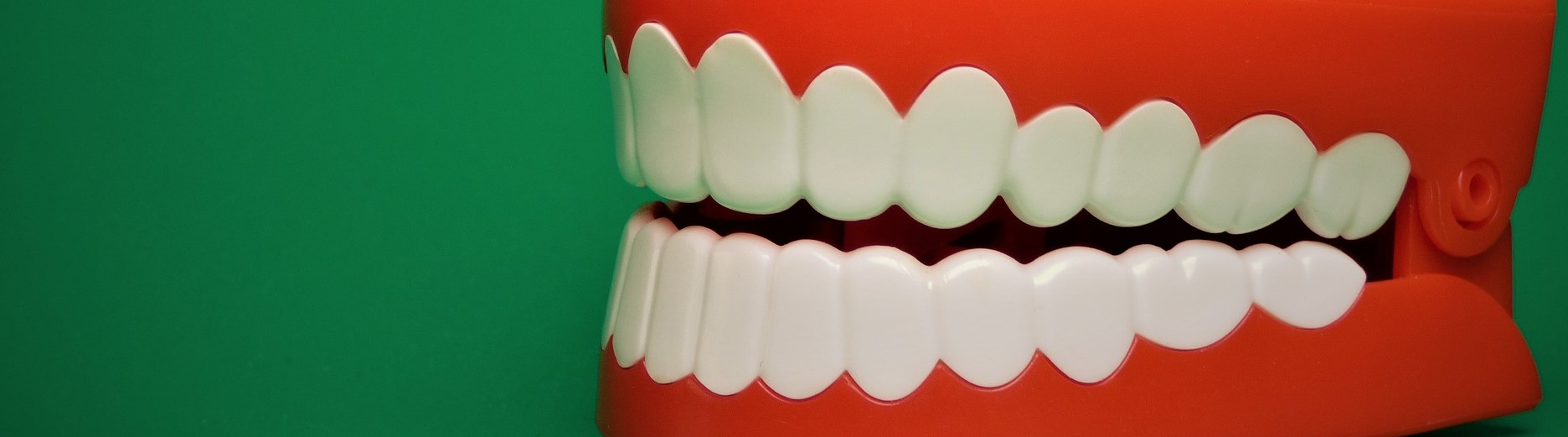 Oral Health Care in Care Homes